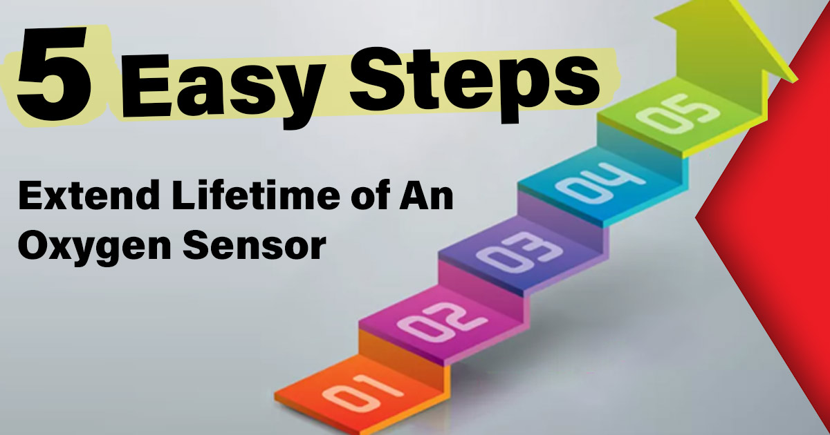 Extend Lifetime of An Oxygen Sensor: 5 Easy Steps [2019 Guide]